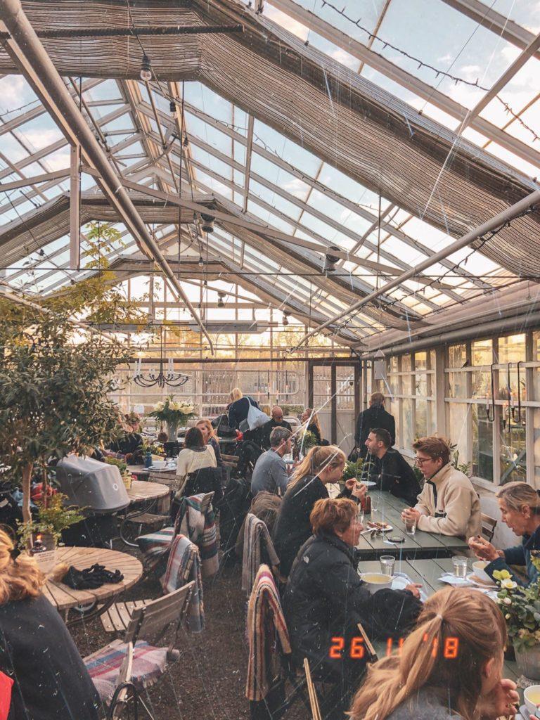 Rosendals Trädgård cafè Stoccolma