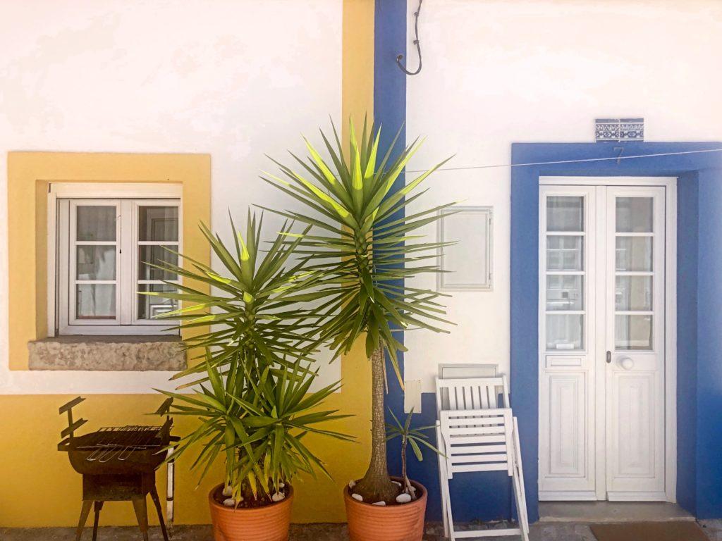 una porta gialla, una porta blu e una pianta