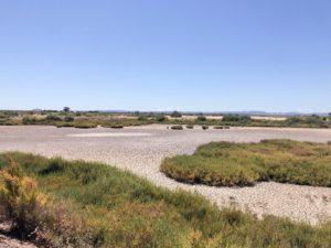 campo di saline secche