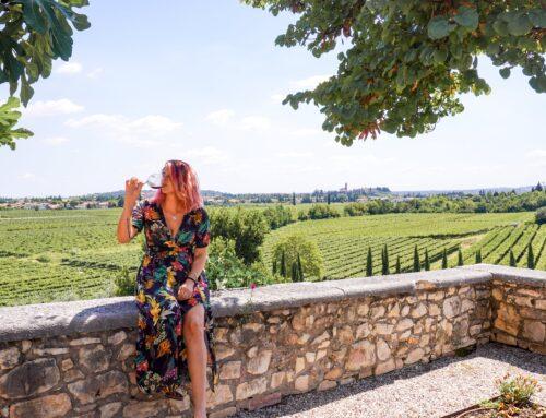 Tenute Ugolini a Verona: degustazione Amarone della Valpolicella (e non solo)